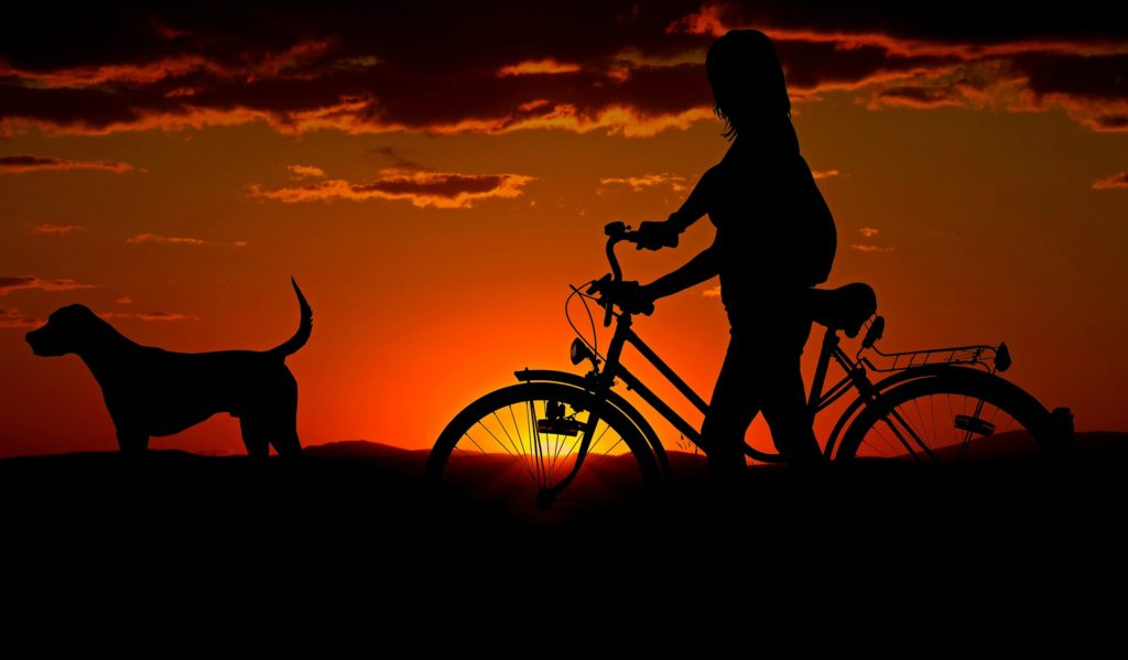 Silhouettes - Summer Landscape Photography